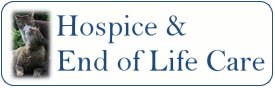 Cat hospice care and end of life care